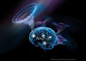 خلاقیت مغز خلاقیت ما